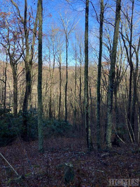 Lot 2 Catspaw Road, Cullowhee, NC 28723 (MLS #95352) :: Berkshire Hathaway HomeServices Meadows Mountain Realty