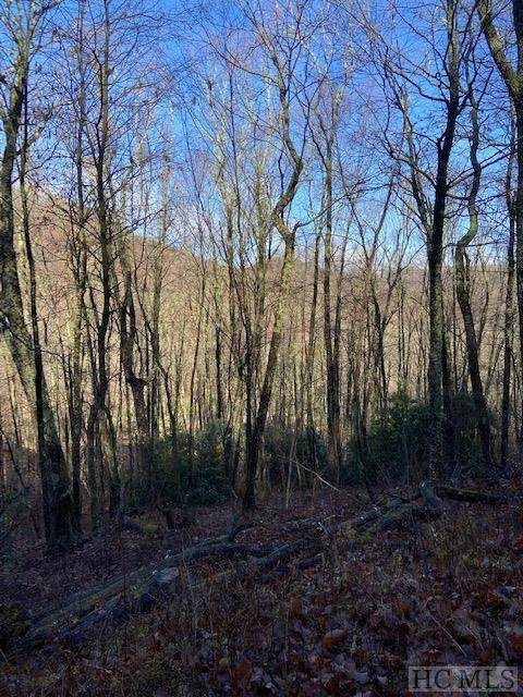 Lot 3 Catspaw Road, Cullowhee, NC 28723 (MLS #95353) :: Berkshire Hathaway HomeServices Meadows Mountain Realty