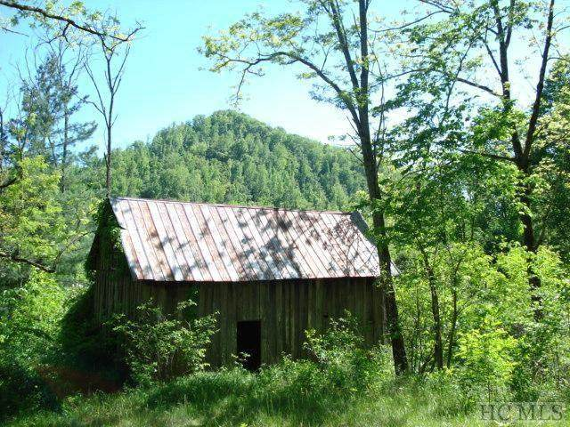000 Ellijay Road, Franklin, NC 28734 (MLS #95356) :: Berkshire Hathaway HomeServices Meadows Mountain Realty