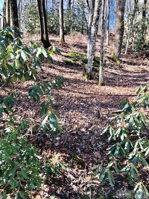 Lot 43 West Christy Trail, Sapphire, NC 28774 (MLS #95769) :: Pat Allen Realty Group
