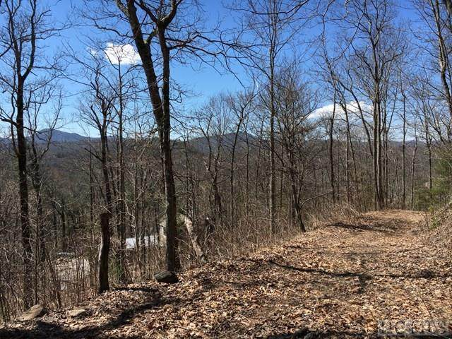 Lt 17,18 Birch Creek Trail, Cashiers, NC 28717 (MLS #95795) :: Pat Allen Realty Group