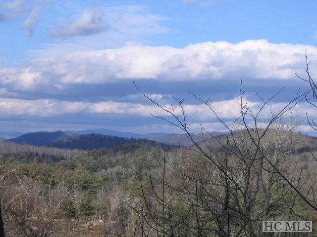 4/5 Old Wagon Trail, Highlands, NC 28741 (MLS #95823) :: Pat Allen Realty Group