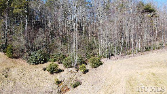 Lot# 15 Trillium Ridge Road, Cullowhee, NC 23736 (MLS #95858) :: Berkshire Hathaway HomeServices Meadows Mountain Realty