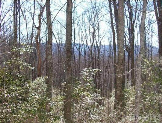 lot 122 Black Oak Drive, Sapphire, NC 28774 (MLS #95863) :: Berkshire Hathaway HomeServices Meadows Mountain Realty