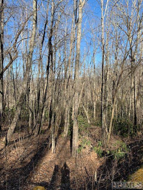 Lot 229 Highlands Cove Drive, Highlands, NC 28741 (MLS #95878) :: Pat Allen Realty Group