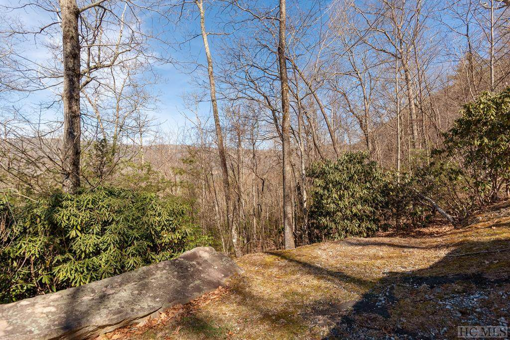 595 Pine Forest Road - Photo 1
