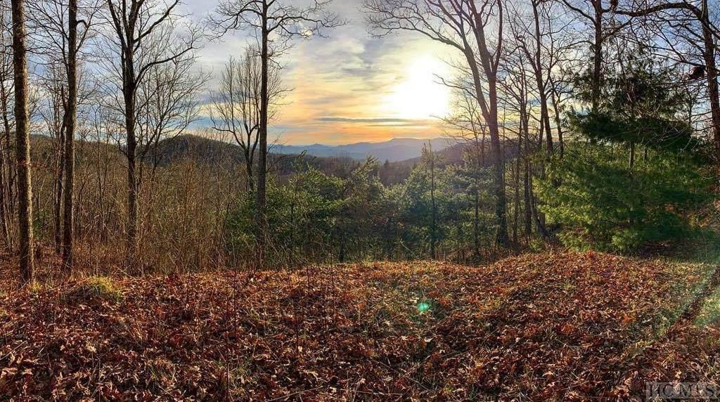 2-4 Bartram Ridge Drive - Photo 1