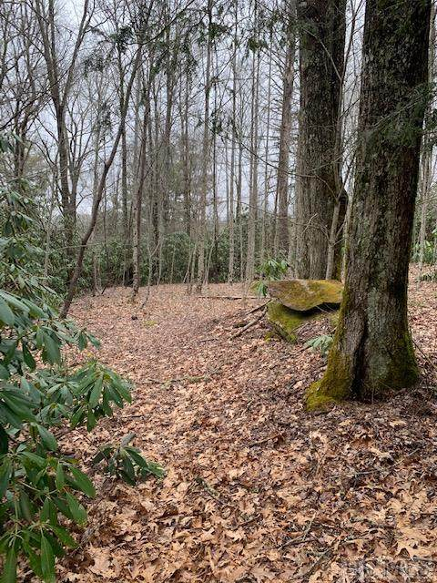 tbd Shelby Drive, Highlands, NC 28741 (MLS #96040) :: Pat Allen Realty Group