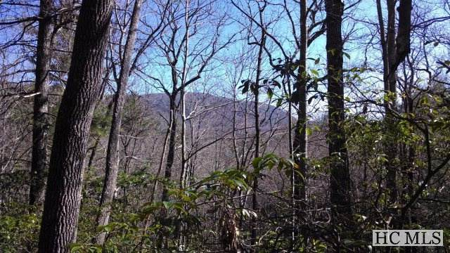 Lot 4 Sapphire Post Office Road, Sapphire, NC 28774 (MLS #96094) :: Berkshire Hathaway HomeServices Meadows Mountain Realty