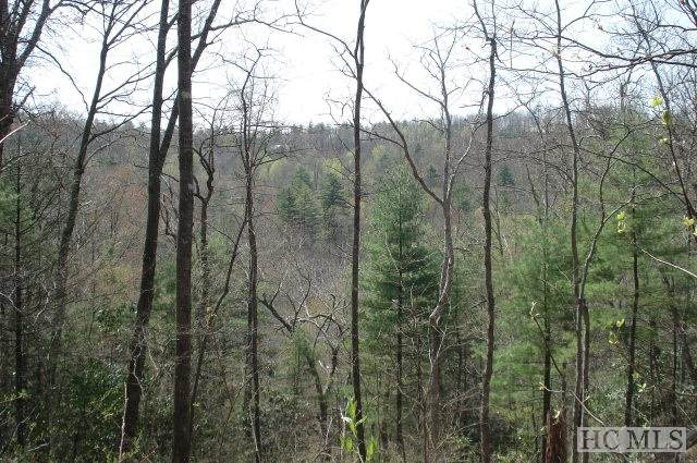 Lot 79 Parsons View, Cashiers, NC 28717 (MLS #96100) :: Berkshire Hathaway HomeServices Meadows Mountain Realty