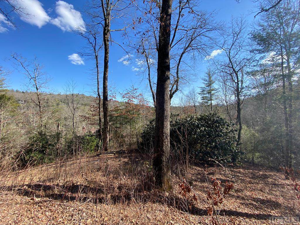 19 Laurel Branch - Photo 1
