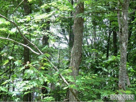 Lot 27 Wolf Knob Road, Cullowhee, NC 28723 (MLS #96197) :: Pat Allen Realty Group