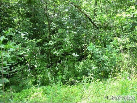 Lot 8 Lowland Glade Dr, Cullowhee, NC 28736 (MLS #96210) :: Berkshire Hathaway HomeServices Meadows Mountain Realty