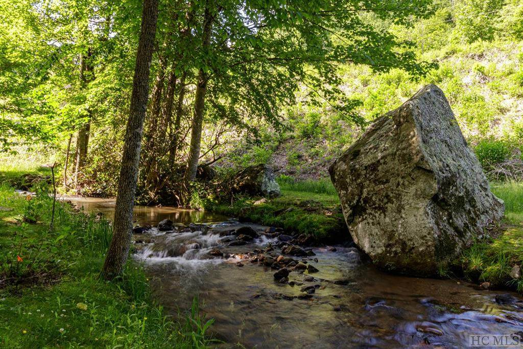 112 Bold Creek Trail - Photo 1