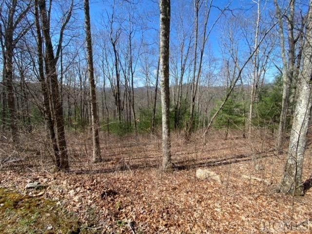 Lot 56 Beechfern Drive, Glenville, NC 28736 (MLS #96272) :: Berkshire Hathaway HomeServices Meadows Mountain Realty