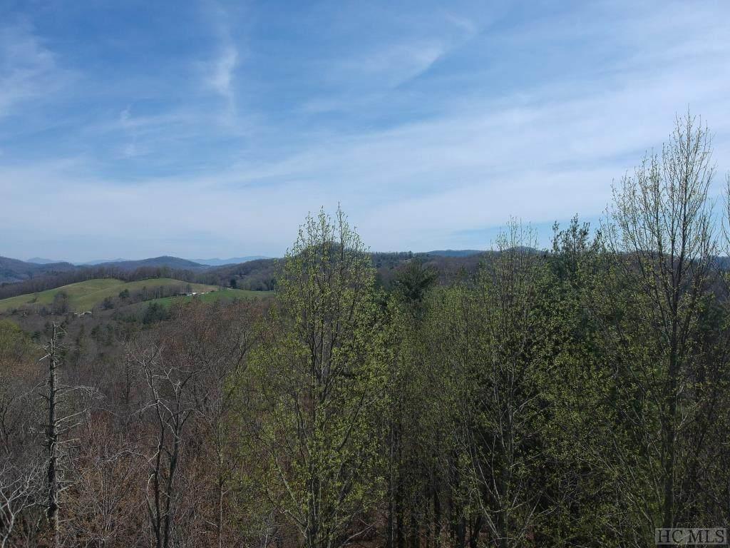 Lot 55 Springhead Trail - Photo 1