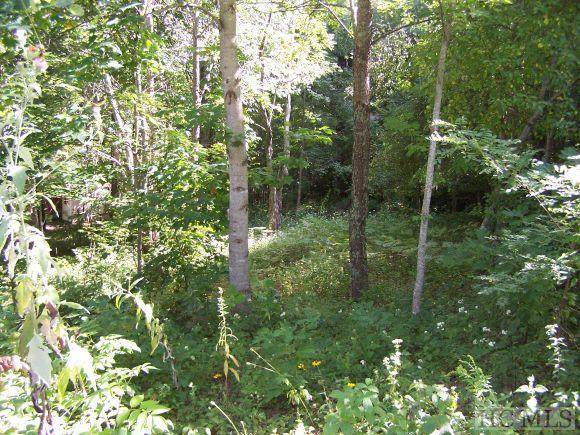 Lot #7 Trellis Lane, Cashiers, NC 28717 (MLS #96410) :: Berkshire Hathaway HomeServices Meadows Mountain Realty