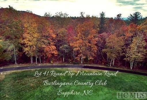 Lot 41 Round Top Mountain Road - Photo 1