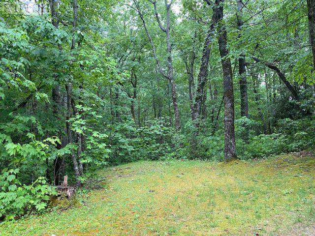 TBD Windy Hill Road, Highlands, NC 28741 (MLS #96626) :: Berkshire Hathaway HomeServices Meadows Mountain Realty
