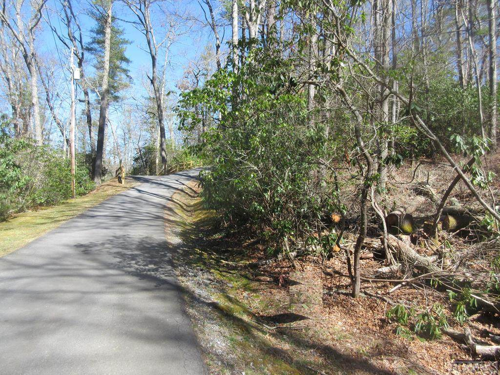 Lot 24 Woods Mountain Trail - Photo 1