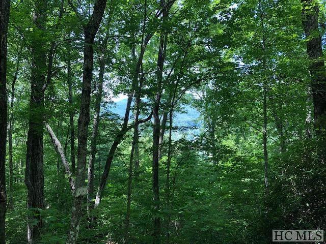 TBD Shepherds Gap Road, Cullowhee, NC 28723 (MLS #96746) :: Berkshire Hathaway HomeServices Meadows Mountain Realty