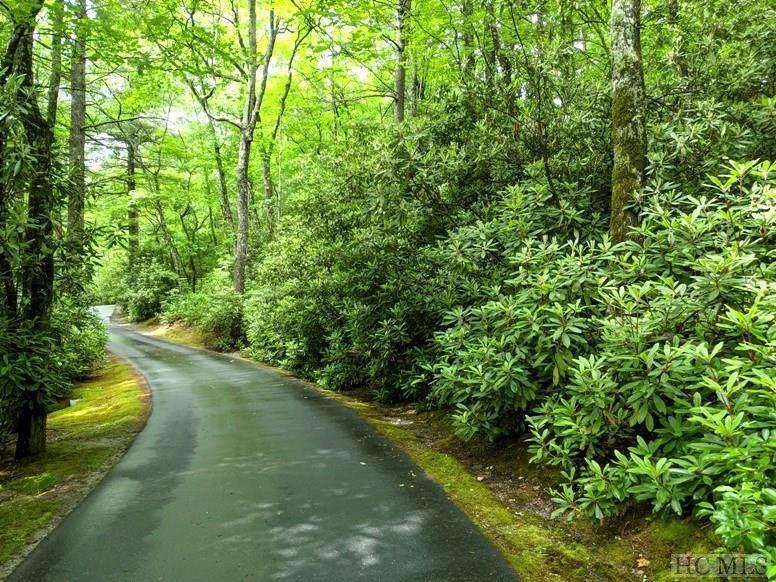 Lot 22 Woods Summit Lane - Photo 1