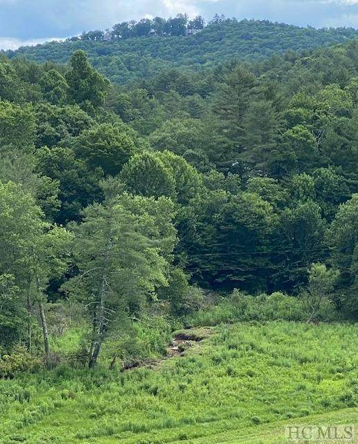 TBD Yellow Mountain Road - Photo 1