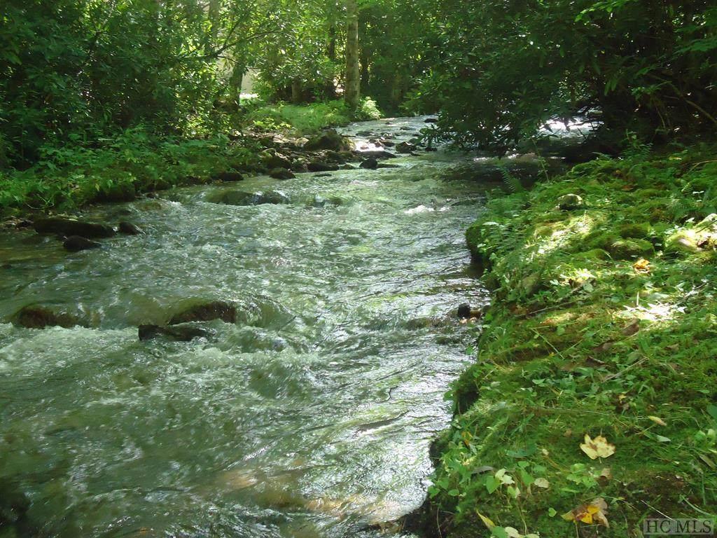 1708 Trout Creek Road - Photo 1