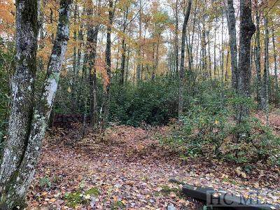 TBD Wild River Road, Cashiers, NC 28717 (MLS #97421) :: Berkshire Hathaway HomeServices Meadows Mountain Realty