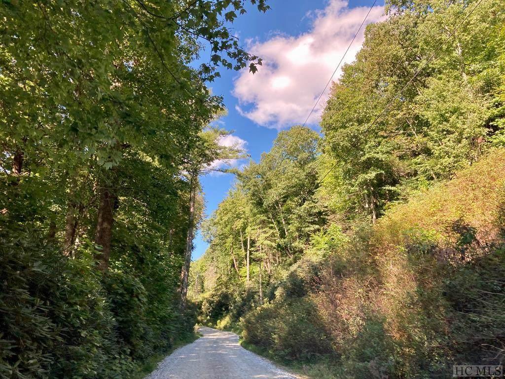 TBD Walkingstick Road - Photo 1