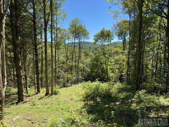 Lot #59 Springhead Trail, Cullowhee, NC 28723 (MLS #97525) :: Berkshire Hathaway HomeServices Meadows Mountain Realty