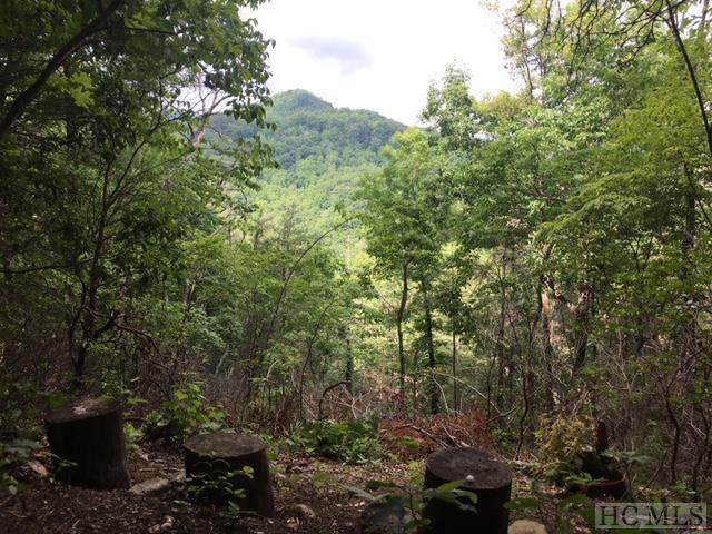 Lot 9 Gorge View, Highlands, NC 28741 (MLS #97570) :: Berkshire Hathaway HomeServices Meadows Mountain Realty