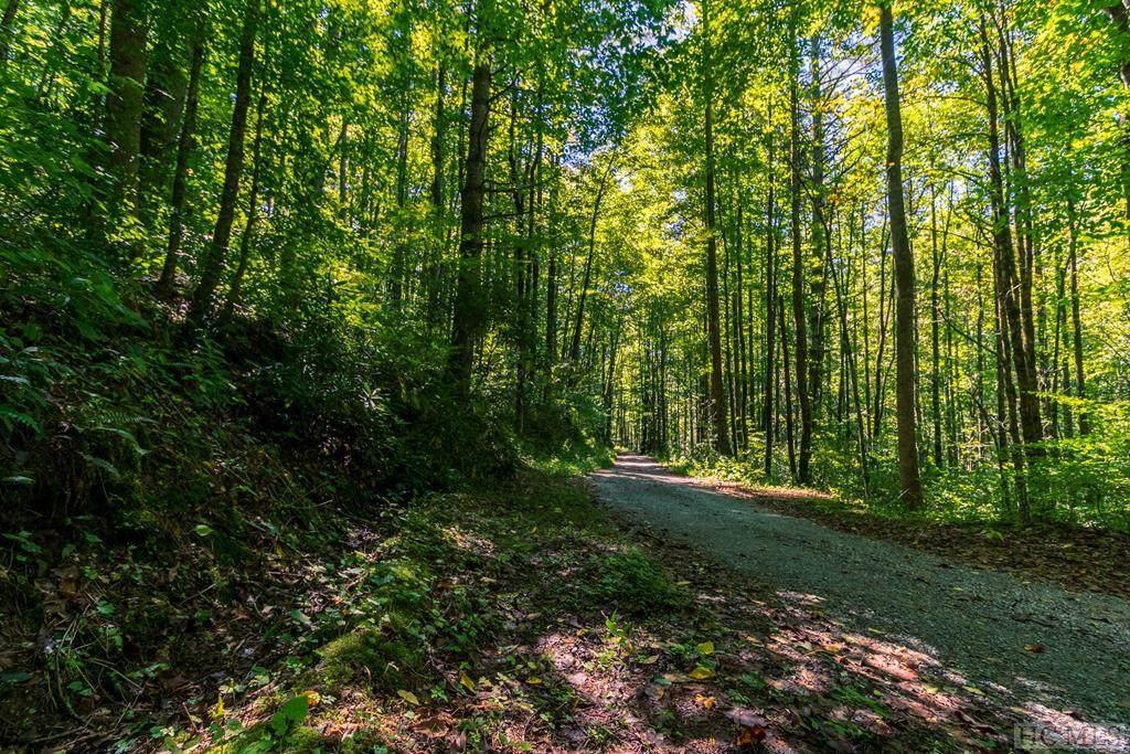 2278 Buck Creek - Photo 1