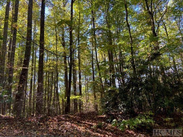 Lot 57 Black Oak Drive, Sapphire, NC 28774 (MLS #97751) :: Berkshire Hathaway HomeServices Meadows Mountain Realty
