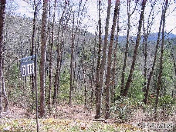 18G Woodward Trail, Sapphire, NC 28774 (MLS #70327) :: Berkshire Hathaway HomeServices Meadows Mountain Realty