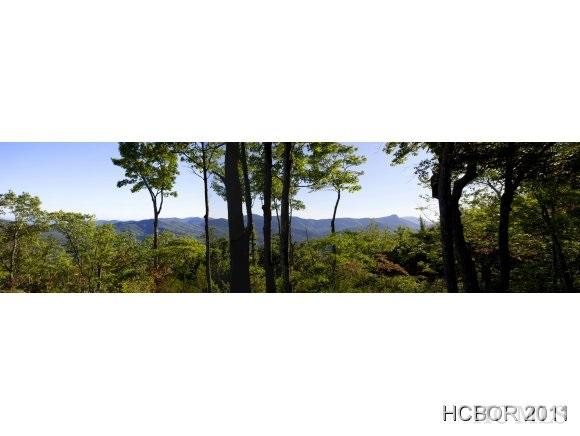 18 W Whitetail Drive, Sapphire, NC 28774 (MLS #73700) :: Berkshire Hathaway HomeServices Meadows Mountain Realty