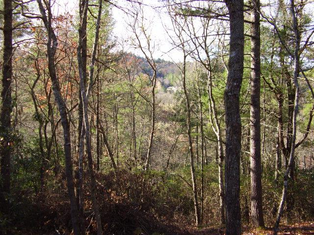 26 Wildberry Lane, Cullowhee, NC 28723 (MLS #73982) :: Berkshire Hathaway HomeServices Meadows Mountain Realty
