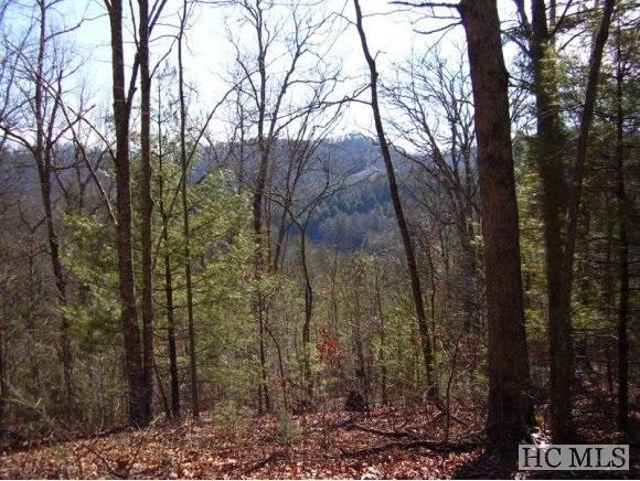 17 Glen Laurel Lane, Cullowhee, NC 28723 (MLS #74350) :: Berkshire Hathaway HomeServices Meadows Mountain Realty