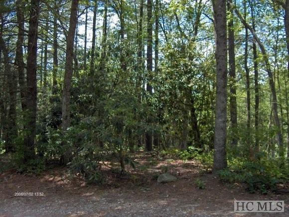 59 East Shore Drive, Lake Toxaway, NC 28747 (MLS #76190) :: Berkshire Hathaway HomeServices Meadows Mountain Realty