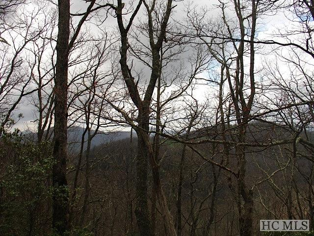 Lot 12 Upper Whitewater Road, Sapphire, NC 28774 (MLS #77000) :: Berkshire Hathaway HomeServices Meadows Mountain Realty
