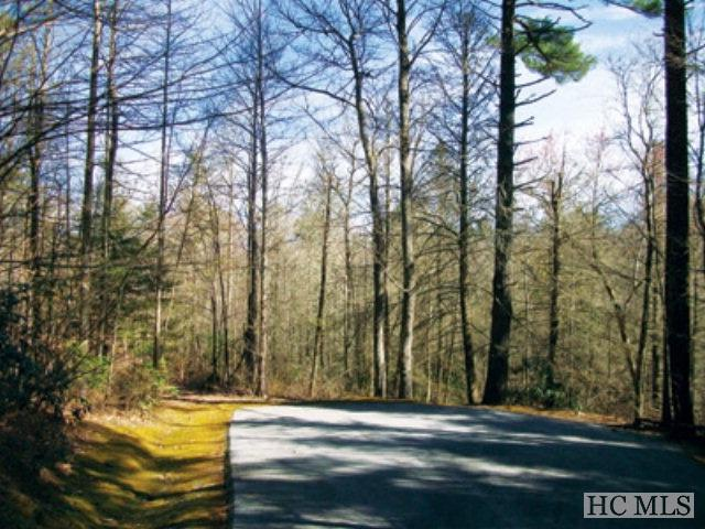 Lot 25 Cliff Ridge Court, Cashiers, NC 28717 (MLS #79219) :: Lake Toxaway Realty Co