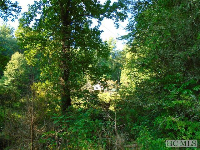 184 Elk Hair Drive, Cullowhee, NC 28768 (MLS #80505) :: Berkshire Hathaway HomeServices Meadows Mountain Realty