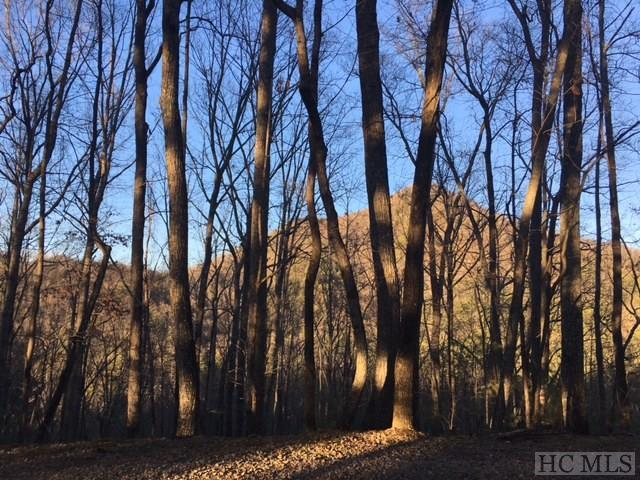Tract 5 Cardinal Ridge, Highlands, NC 28741 (MLS #81160) :: Berkshire Hathaway HomeServices Meadows Mountain Realty