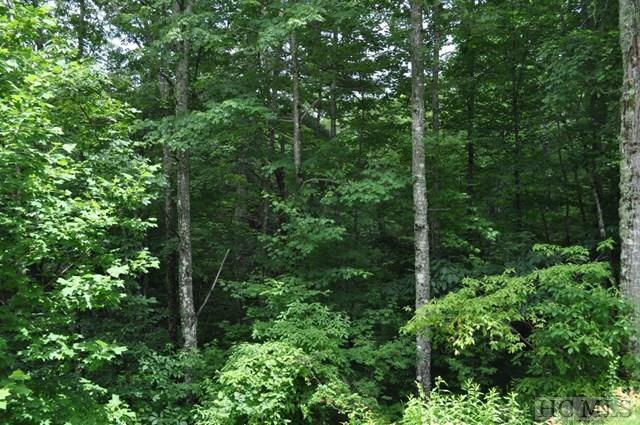 Lot 10 Glen Pointe, Cullowhee, NC 28723 (MLS #81651) :: Berkshire Hathaway HomeServices Meadows Mountain Realty