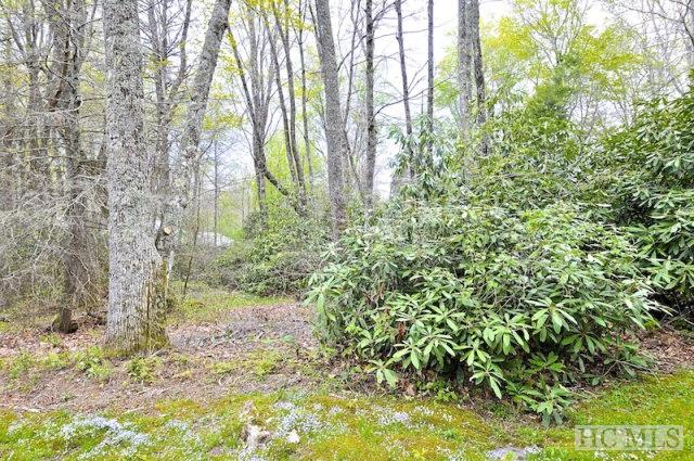 Lot #10 Chestnut Lane, Highlands, NC 28741 (MLS #81660) :: Berkshire Hathaway HomeServices Meadows Mountain Realty