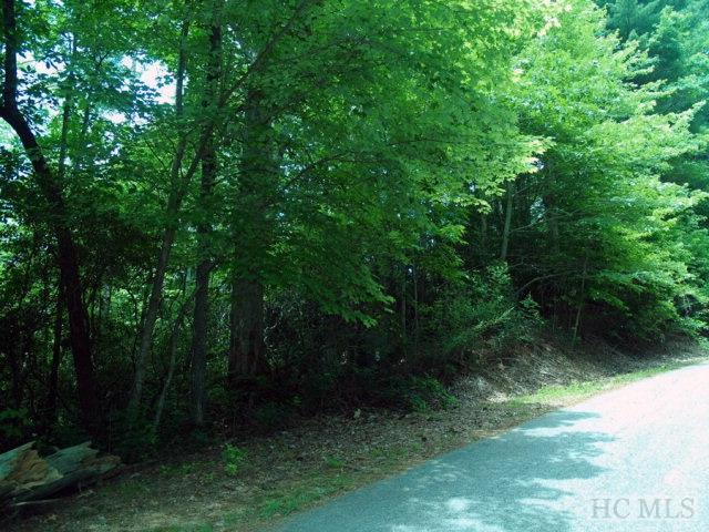 12 & 16 Wildwood Way, Lake Toxaway, NC 28747 (MLS #82158) :: Berkshire Hathaway HomeServices Meadows Mountain Realty