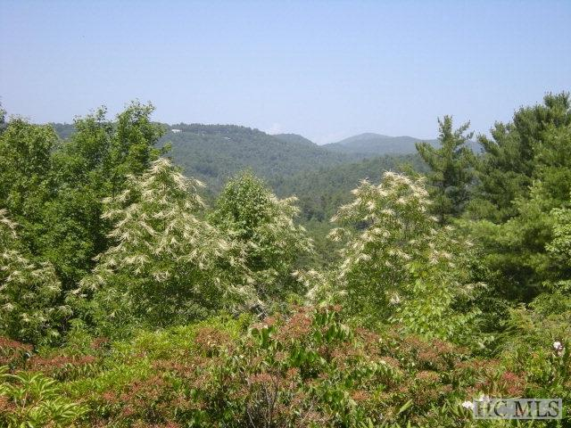 1704 Highlands Mountain Club Drive #1704, Highlands, NC 28741 (MLS #82270) :: Lake Toxaway Realty Co