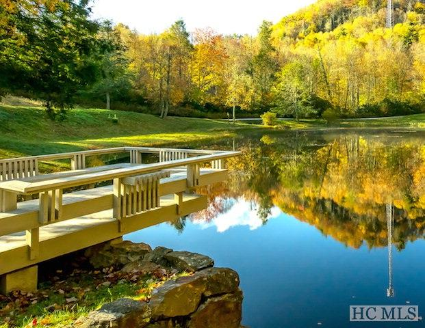 8 Woodland Trail, Cashiers, NC 28717 (MLS #82674) :: Berkshire Hathaway HomeServices Meadows Mountain Realty