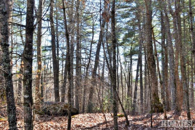 Lot 42 Divide Drive, Cashiers, NC 28717 (MLS #82943) :: Lake Toxaway Realty Co