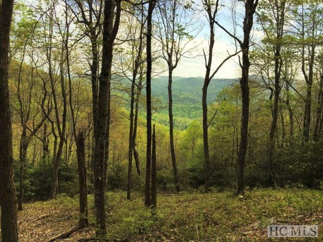 Lots 1&2 Yarak Drive, Sapphire, NC 28774 (MLS #83900) :: Berkshire Hathaway HomeServices Meadows Mountain Realty